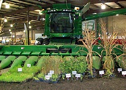 [photo, Farm equipment and crops exhibit, Maryland State Fair, Timonium, Maryland]
